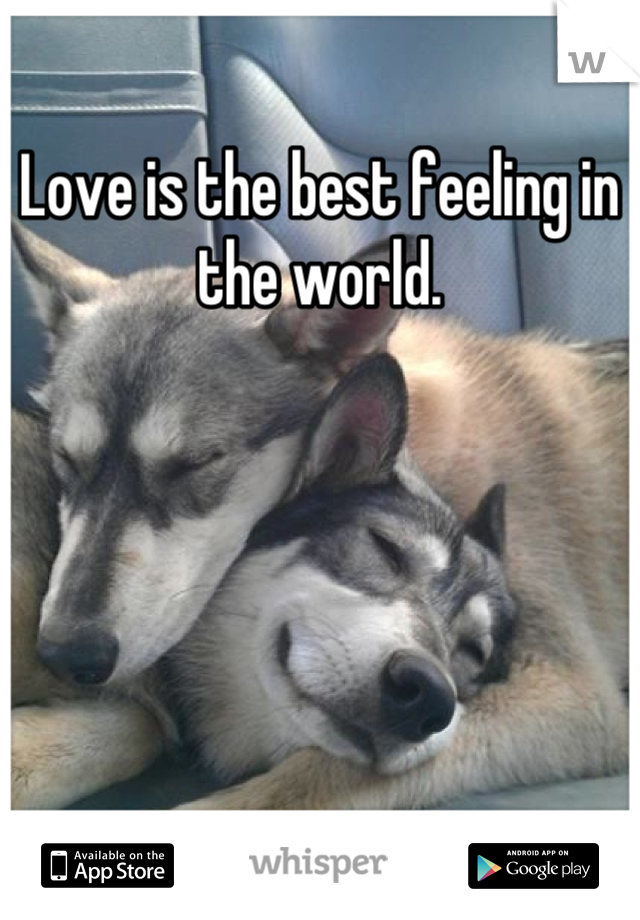 Love is the best feeling in the world.