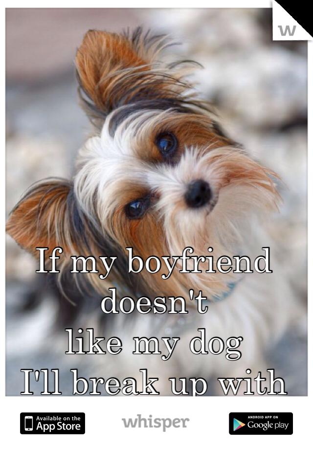 If my boyfriend doesn't  like my dog  I'll break up with him