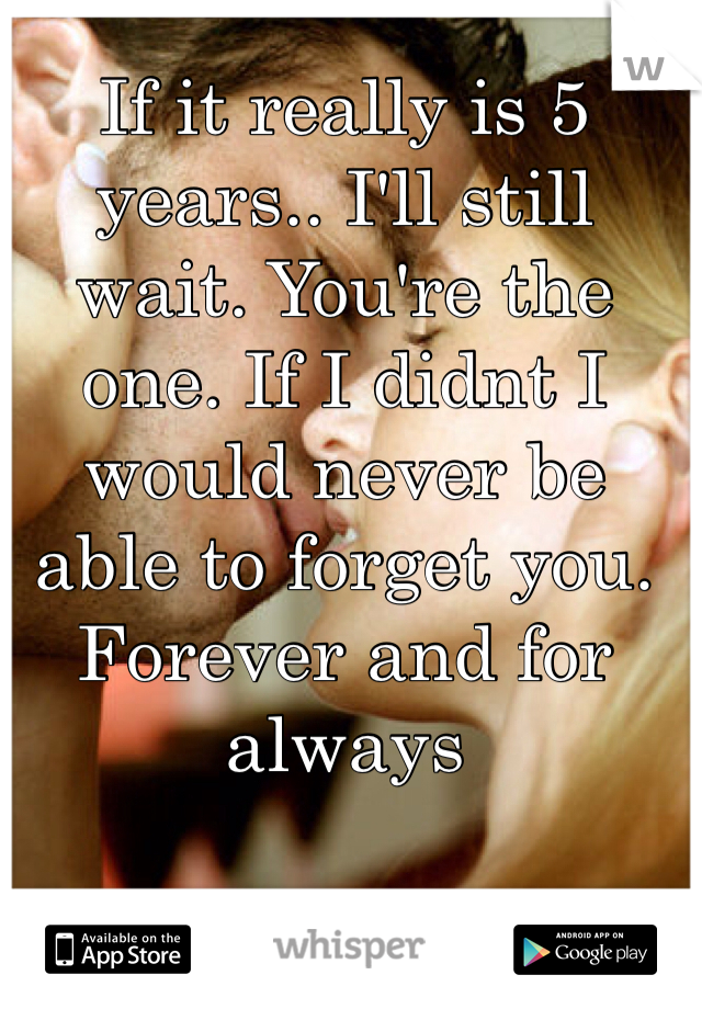 If it really is 5 years.. I'll still wait. You're the one. If I didnt I would never be able to forget you. Forever and for always