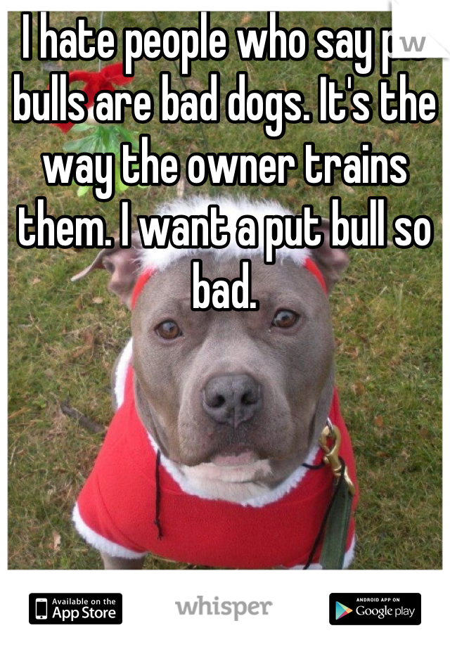 I hate people who say pit bulls are bad dogs. It's the way the owner trains them. I want a put bull so bad.