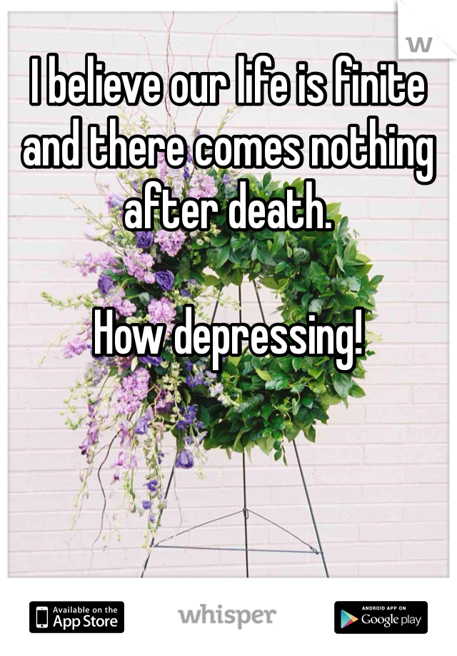 I believe our life is finite and there comes nothing after death.  How depressing!