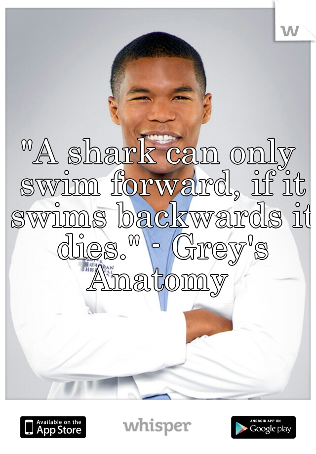 """A shark can only swim forward, if it swims backwards it dies."" - Grey's Anatomy"