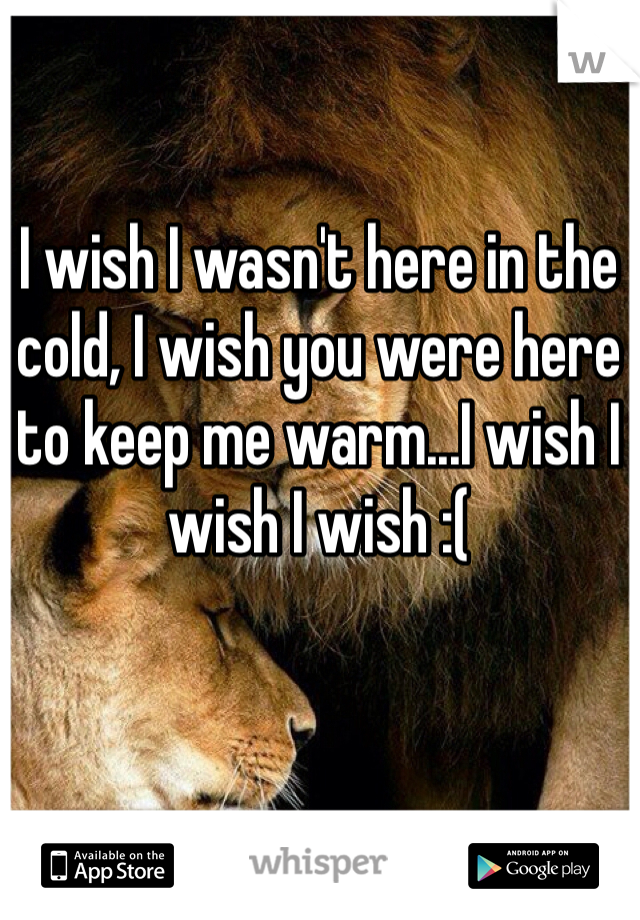 I wish I wasn't here in the cold, I wish you were here to keep me warm...I wish I wish I wish :(