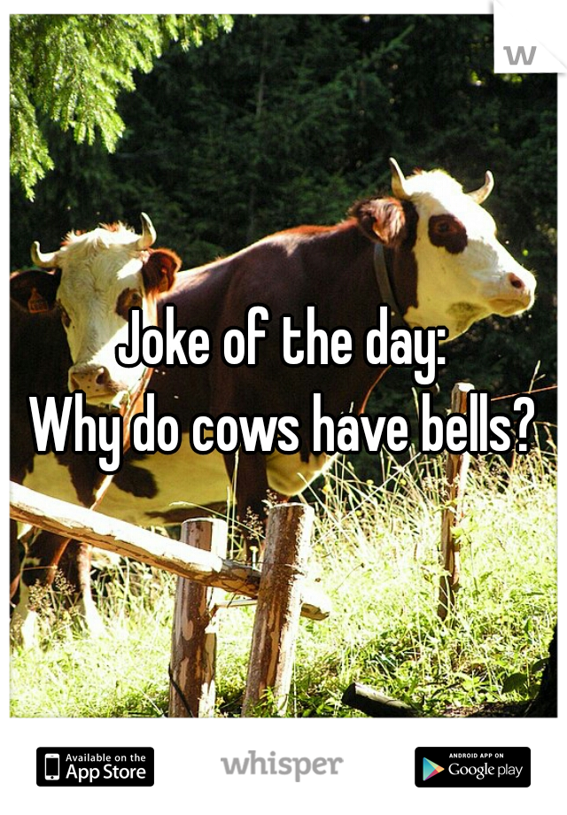 Joke of the day: Why do cows have bells?
