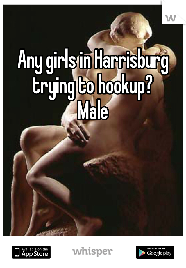 Any girls in Harrisburg trying to hookup? Male