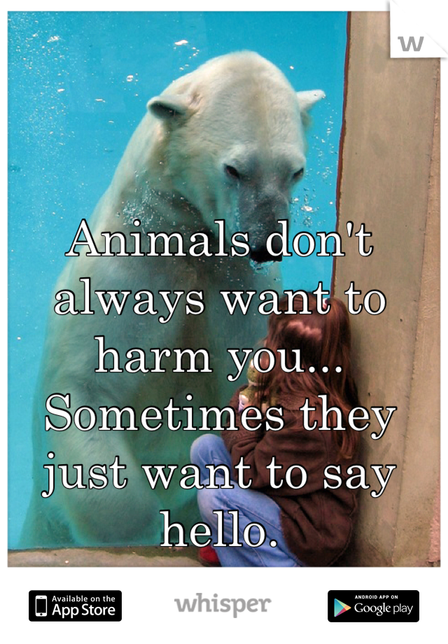 Animals don't always want to harm you... Sometimes they just want to say hello.
