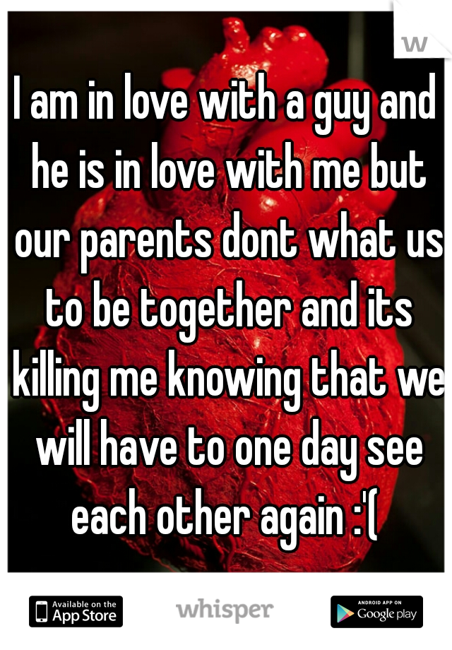 I am in love with a guy and he is in love with me but our parents dont what us to be together and its killing me knowing that we will have to one day see each other again :'(
