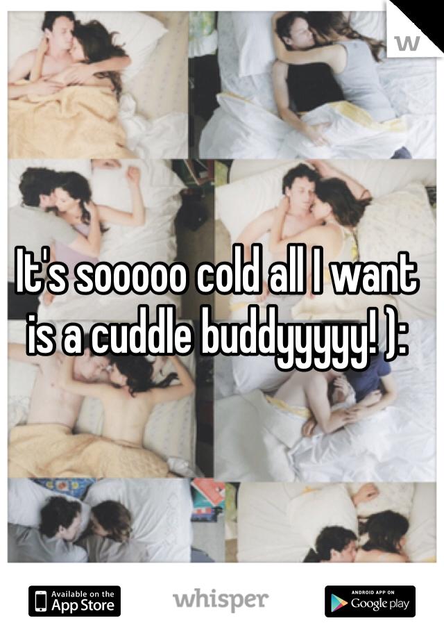 It's sooooo cold all I want is a cuddle buddyyyyy! ):