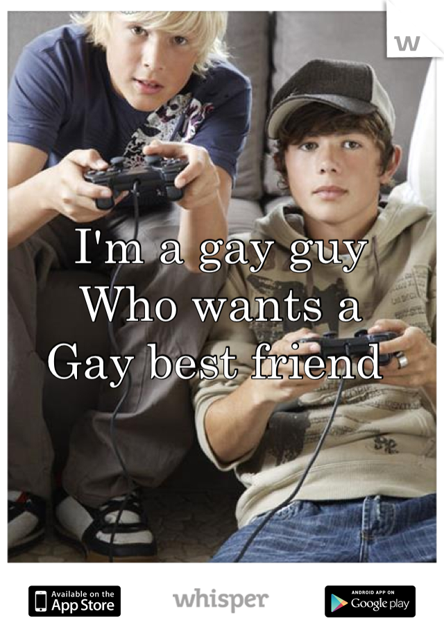 I'm a gay guy  Who wants a Gay best friend
