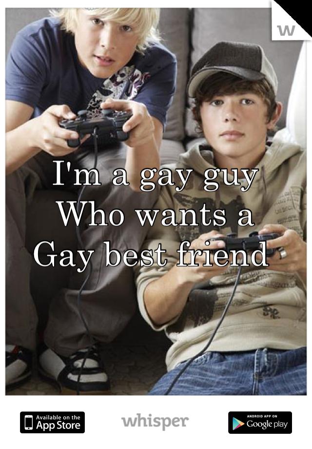 I'm a gay guy  Who wants a Gay best friend