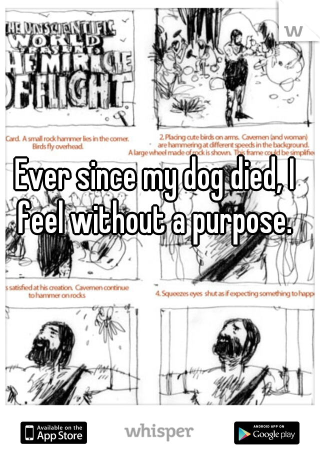 Ever since my dog died, I feel without a purpose.