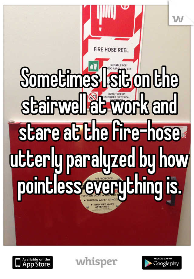 Sometimes I sit on the stairwell at work and stare at the fire-hose utterly paralyzed by how pointless everything is.