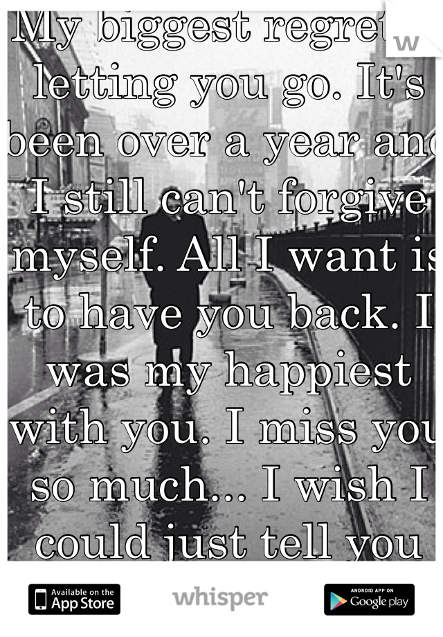 My biggest regret is letting you go. It's been over a year and I still can't forgive myself. All I want is to have you back. I was my happiest with you. I miss you so much... I wish I could just tell you this