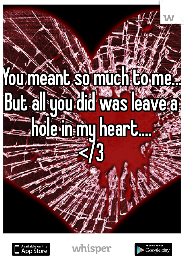 You meant so much to me... But all you did was leave a hole in my heart....  </3