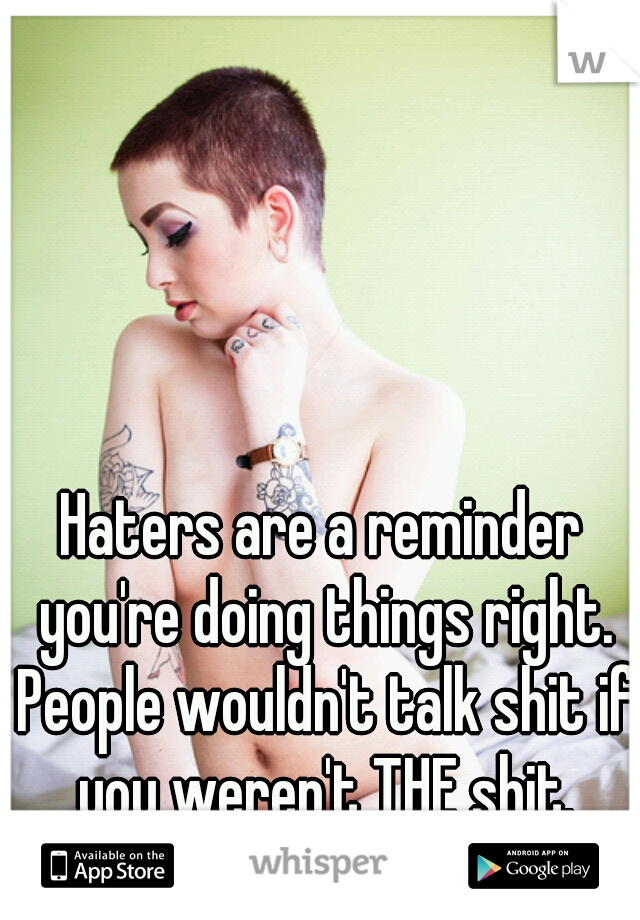 Haters are a reminder you're doing things right. People wouldn't talk shit if you weren't THE shit.