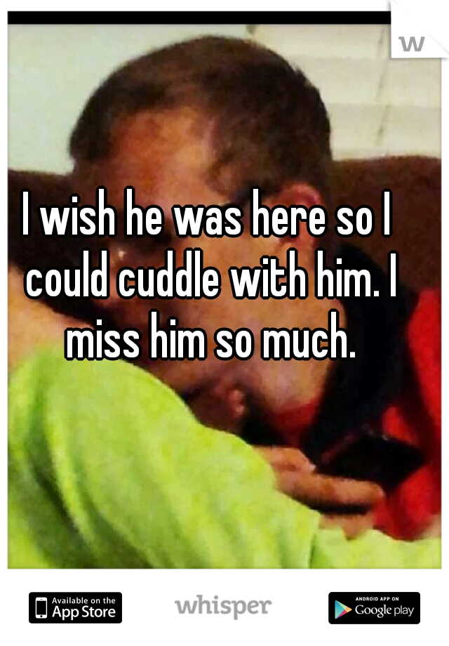 I wish he was here so I could cuddle with him. I miss him so much.