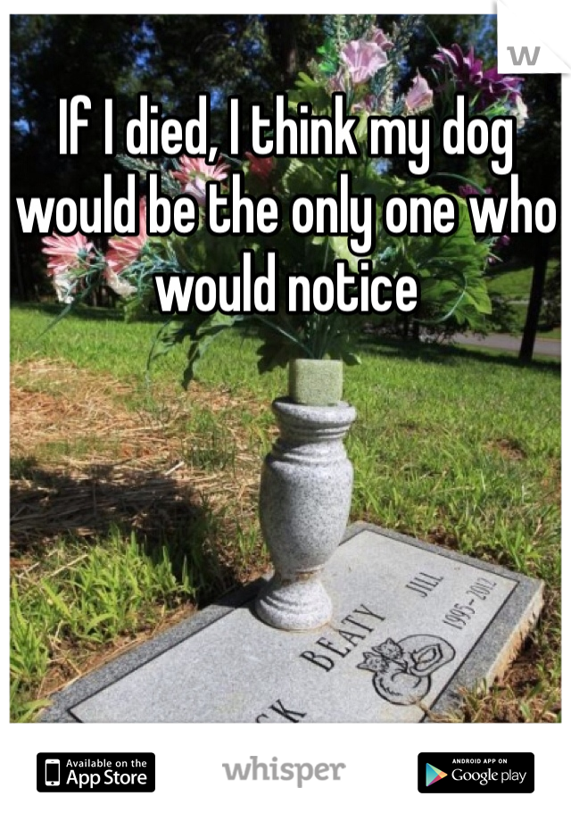 If I died, I think my dog would be the only one who would notice