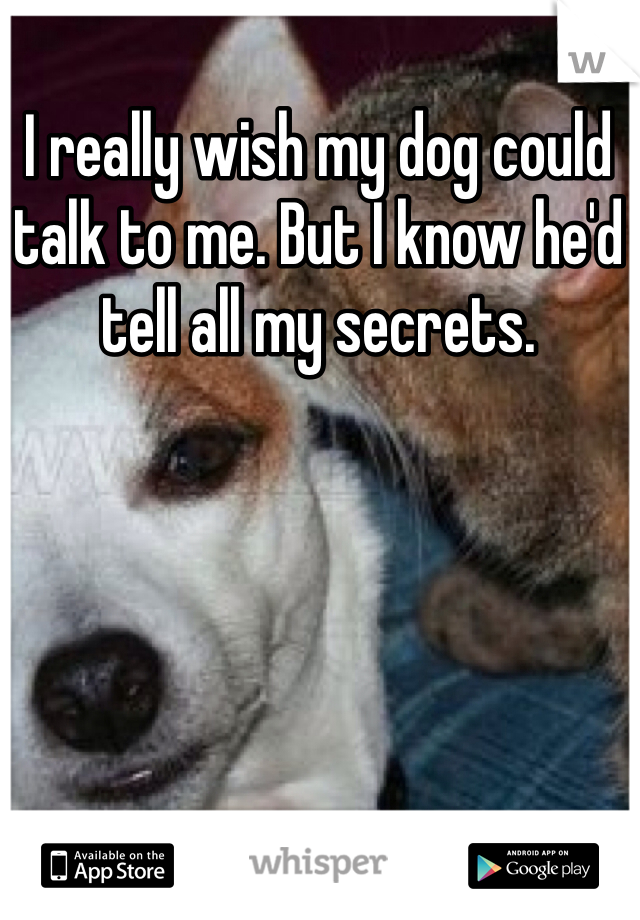 I really wish my dog could talk to me. But I know he'd tell all my secrets.