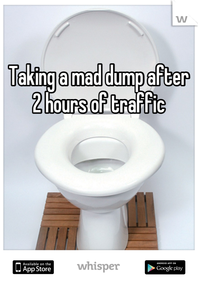 Taking a mad dump after 2 hours of traffic