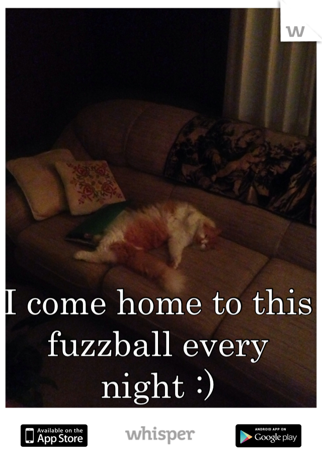 I come home to this fuzzball every night :)