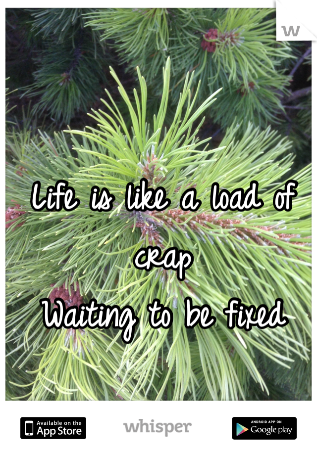Life is like a load of crap Waiting to be fixed