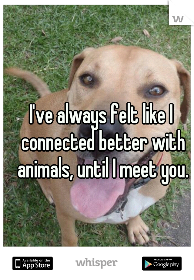 I've always felt like I connected better with animals, until I meet you.