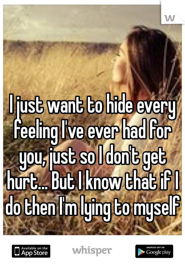 I just want to hide every feeling I've ever had for you, just so I don't get hurt... But I know that if I do then I'm lying to myself