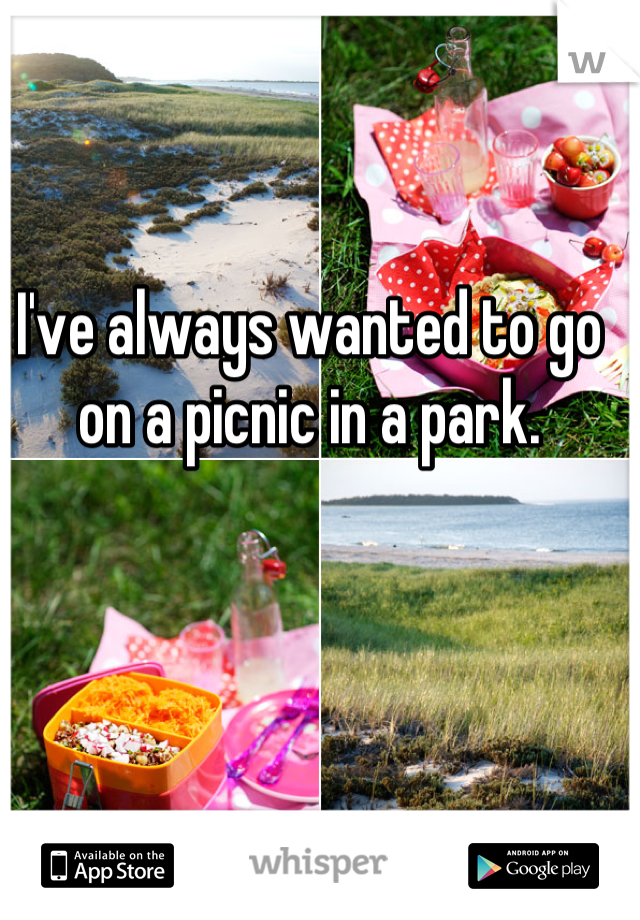 I've always wanted to go on a picnic in a park.