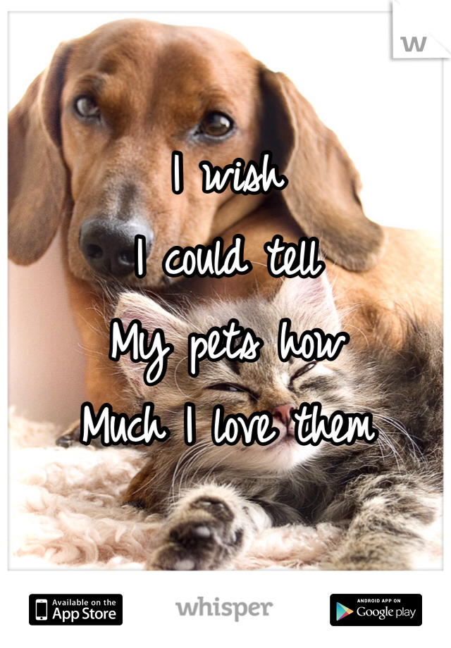 I wish I could tell  My pets how  Much I love them