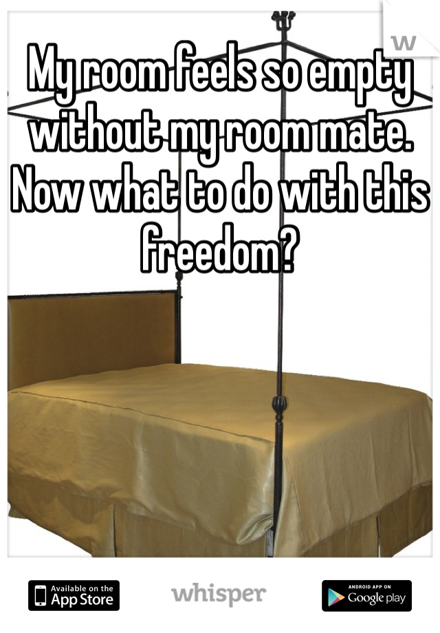 My room feels so empty without my room mate. Now what to do with this freedom?