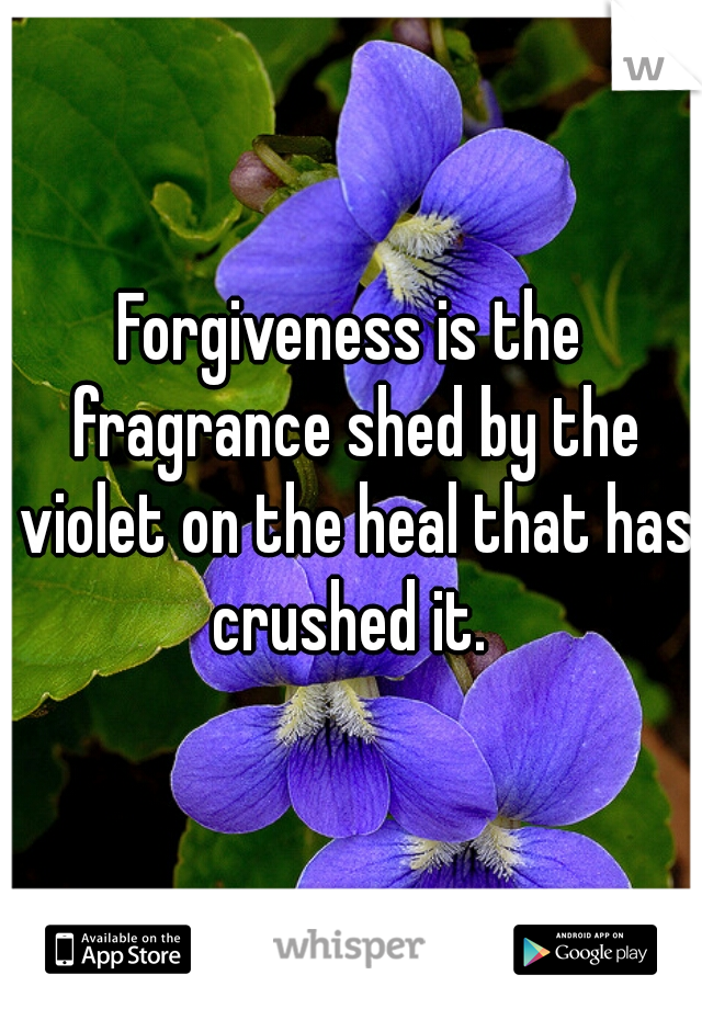 Forgiveness is the fragrance shed by the violet on the heal that has crushed it.