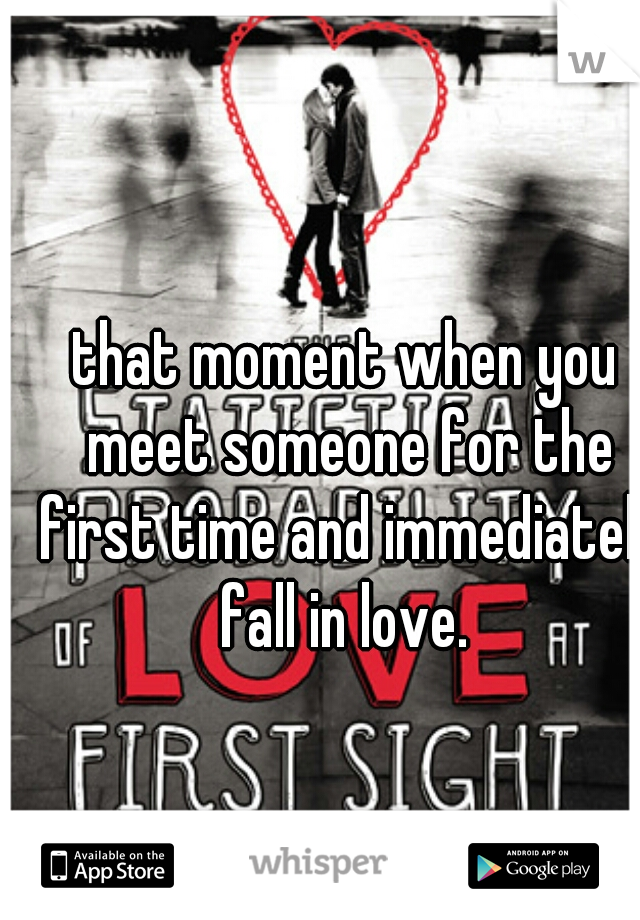 that moment when you meet someone for the first time and immediately fall in love.