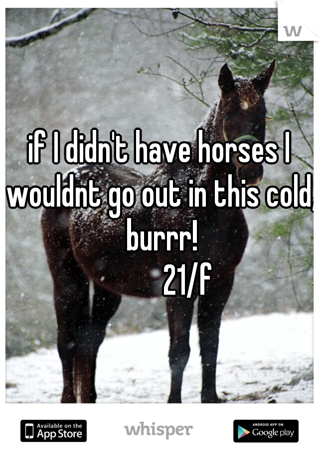 if I didn't have horses I wouldnt go out in this cold, burrr!           21/f