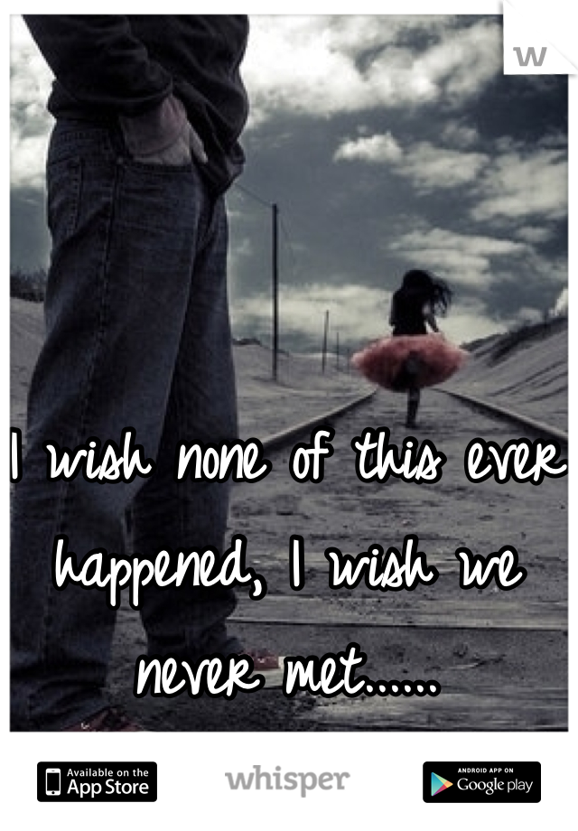 I wish none of this ever happened, I wish we never met......