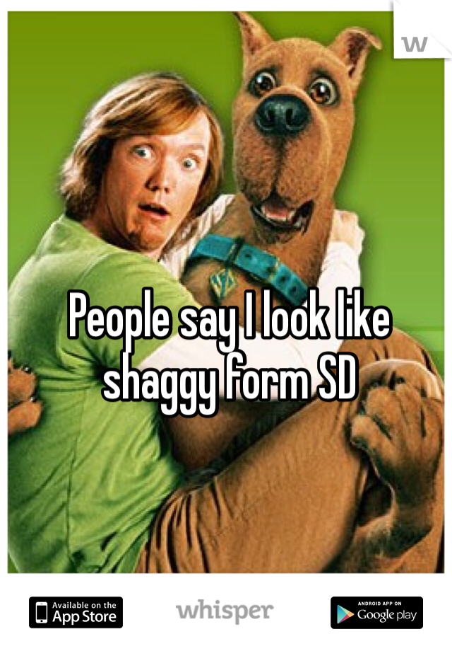People say I look like shaggy form SD