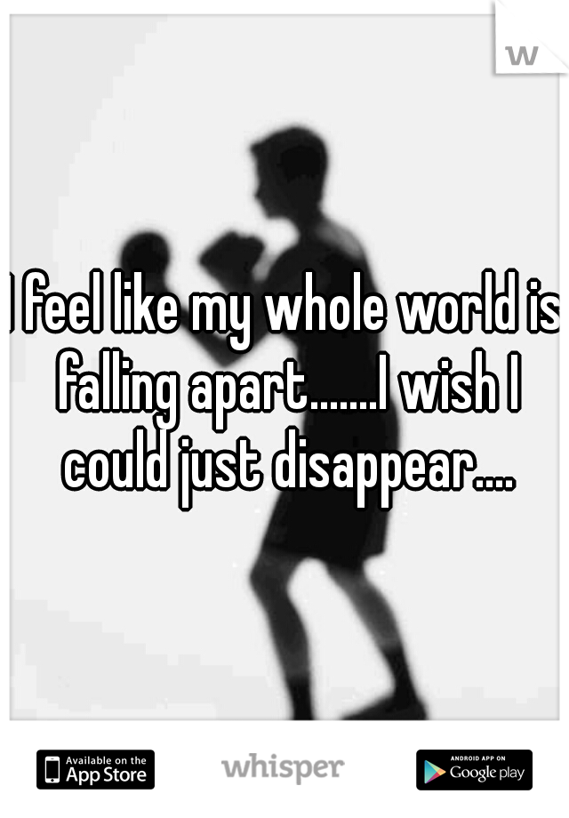 I feel like my whole world is falling apart.......I wish I could just disappear....