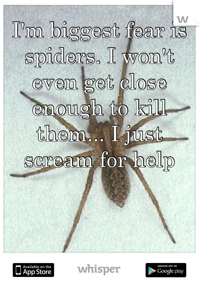 I'm biggest fear is spiders. I won't even get close enough to kill them... I just scream for help