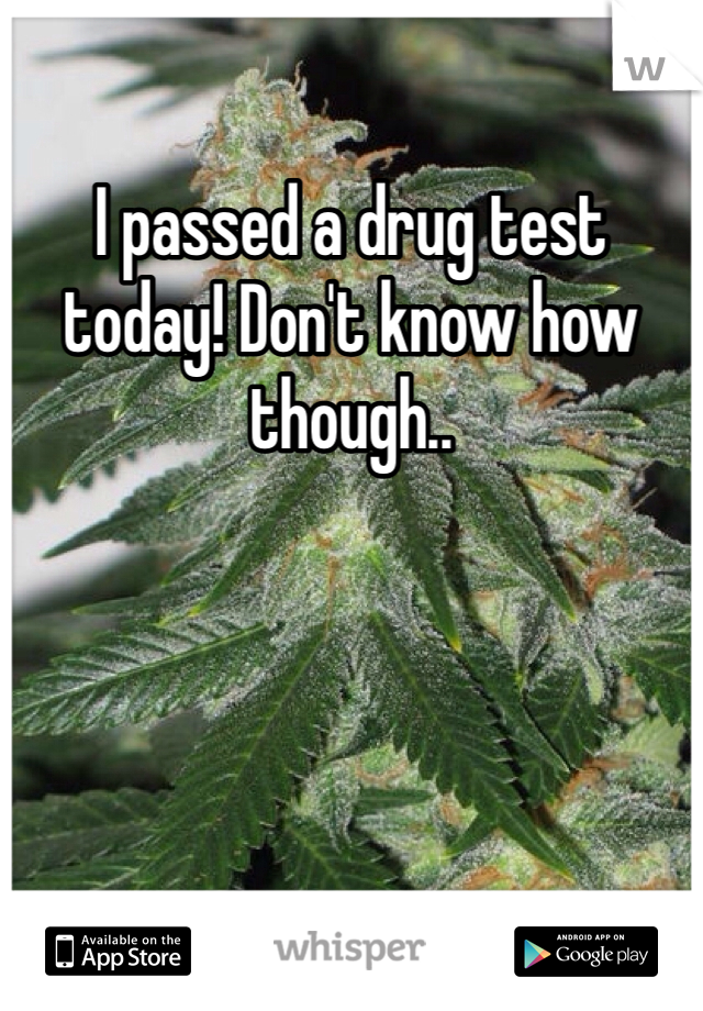 I passed a drug test today! Don't know how though..