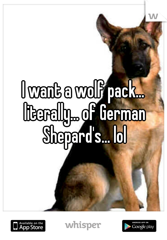 I want a wolf pack... literally... of German Shepard's... lol
