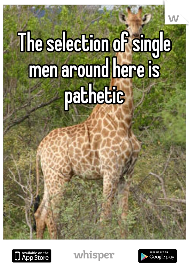 The selection of single men around here is pathetic
