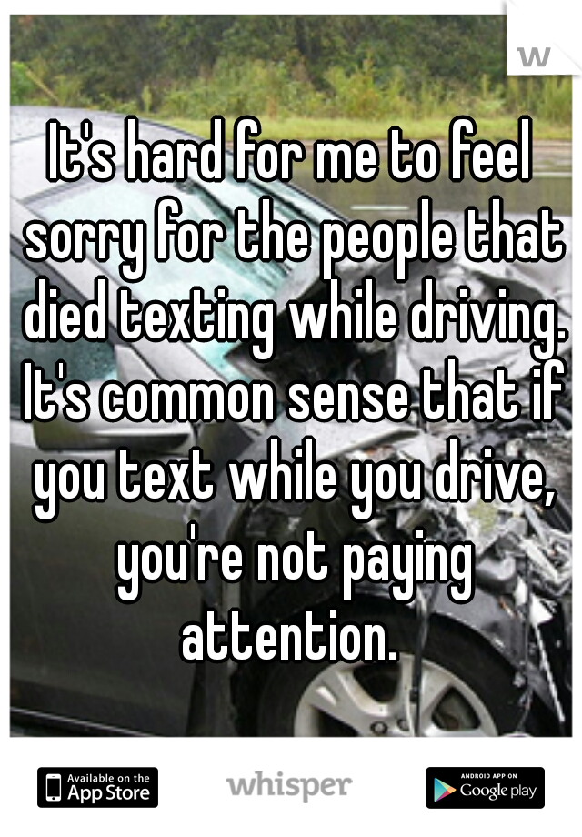It's hard for me to feel sorry for the people that died texting while driving. It's common sense that if you text while you drive, you're not paying attention.