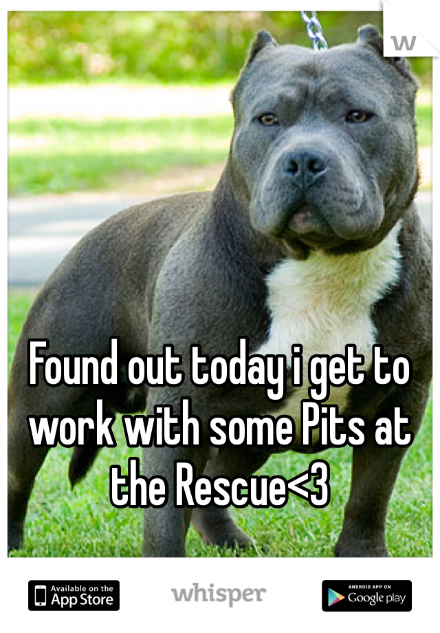 Found out today i get to work with some Pits at the Rescue<3