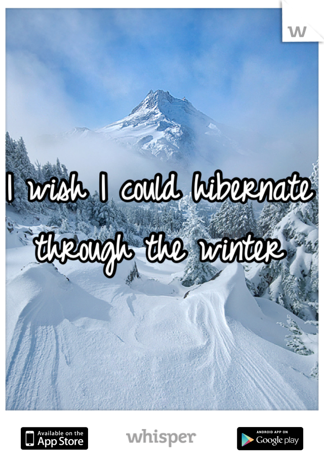 I wish I could hibernate through the winter