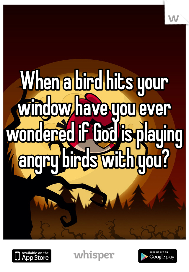 When a bird hits your window have you ever wondered if God is playing angry birds with you?