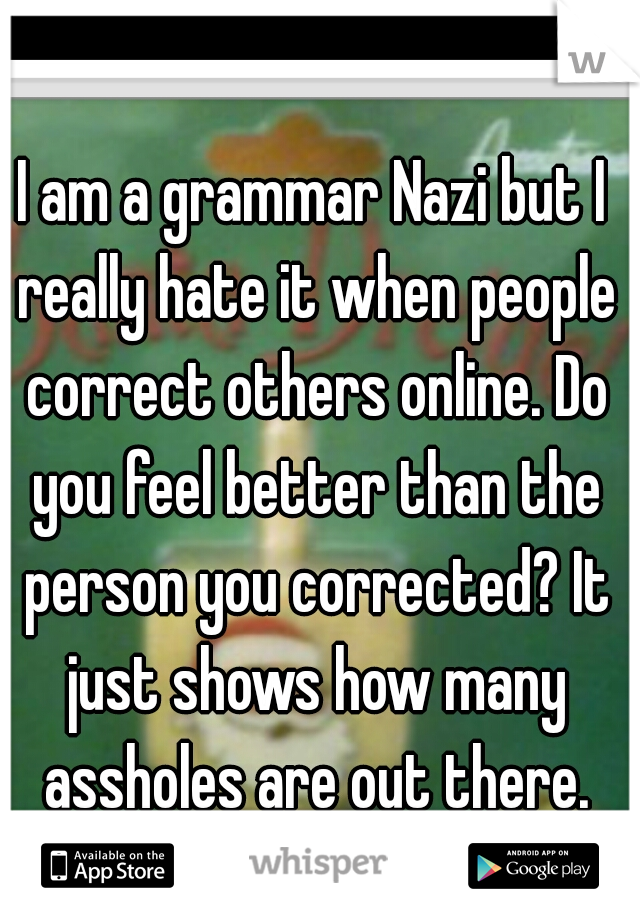 I am a grammar Nazi but I really hate it when people correct others online. Do you feel better than the person you corrected? It just shows how many assholes are out there.