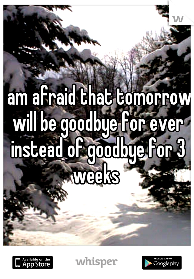 I am afraid that tomorrow will be goodbye for ever instead of goodbye for 3 weeks