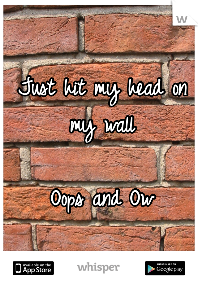 Just hit my head on my wall  Oops and Ow