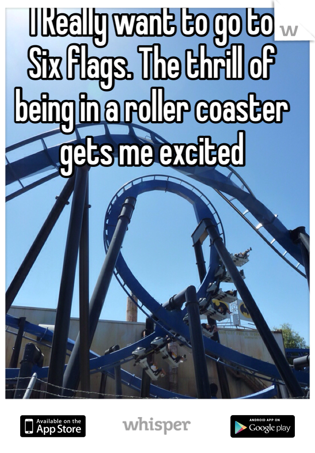 I Really want to go to Six flags. The thrill of being in a roller coaster gets me excited