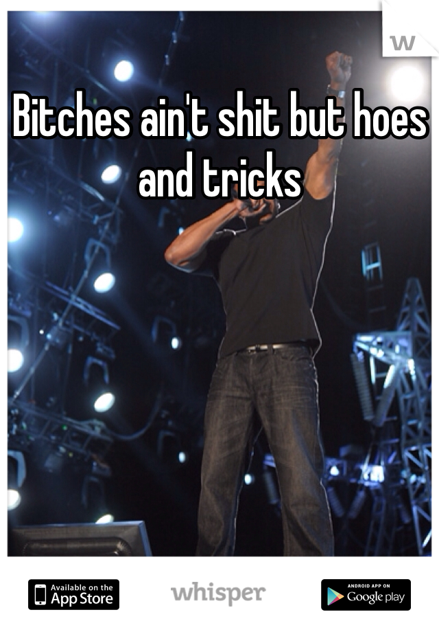 Bitches ain't shit but hoes and tricks