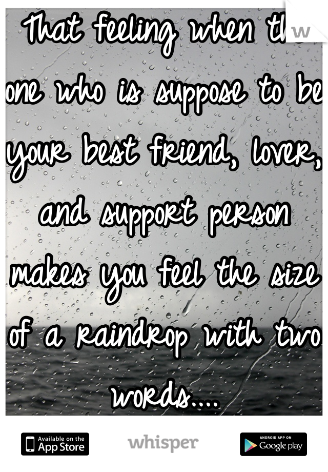 That feeling when the one who is suppose to be your best friend, lover, and support person makes you feel the size of a raindrop with two words....